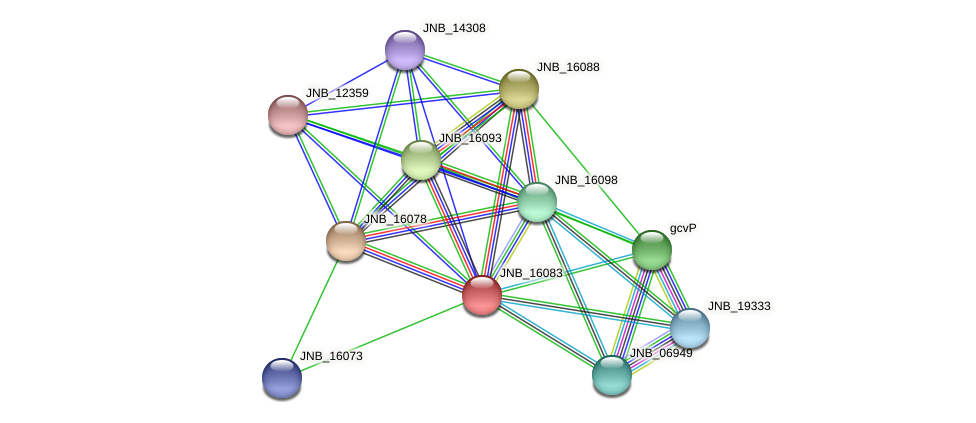 JNB_16083 protein (Janibacter sp. HTCC2649) - STRING interaction network