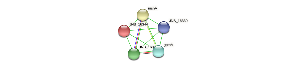 JNB_16344 protein (Janibacter sp. HTCC2649) - STRING interaction network