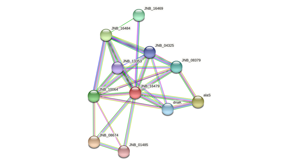 JNB_16479 protein (Janibacter sp. HTCC2649) - STRING interaction network