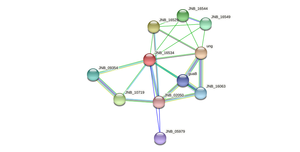 JNB_16534 protein (Janibacter sp. HTCC2649) - STRING interaction network
