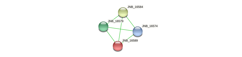 JNB_16589 protein (Janibacter sp. HTCC2649) - STRING interaction network