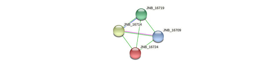 JNB_16724 protein (Janibacter sp. HTCC2649) - STRING interaction network