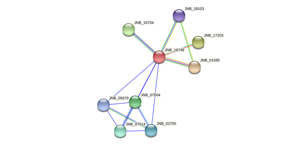 JNB_16749 protein (Janibacter sp. HTCC2649) - STRING interaction network