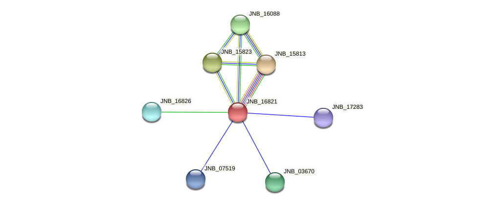 JNB_16821 protein (Janibacter sp. HTCC2649) - STRING interaction network