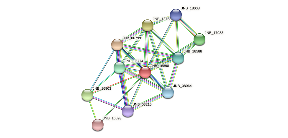 JNB_16898 protein (Janibacter sp. HTCC2649) - STRING interaction network