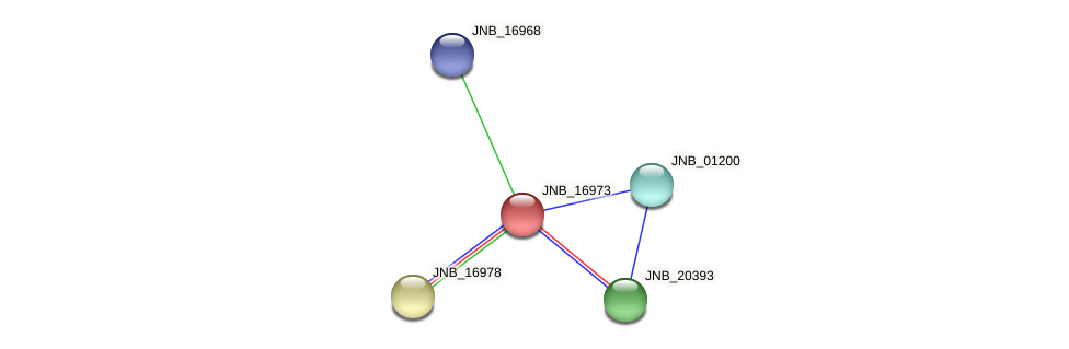 JNB_16973 protein (Janibacter sp. HTCC2649) - STRING interaction network