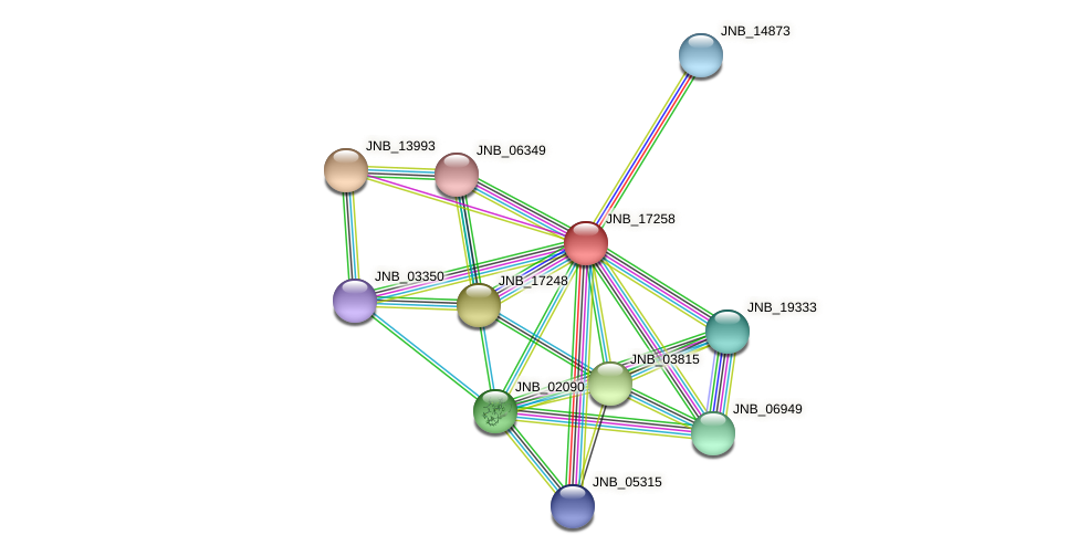 JNB_17258 protein (Janibacter sp. HTCC2649) - STRING interaction network