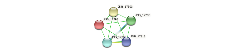JNB_17298 protein (Janibacter sp. HTCC2649) - STRING interaction network