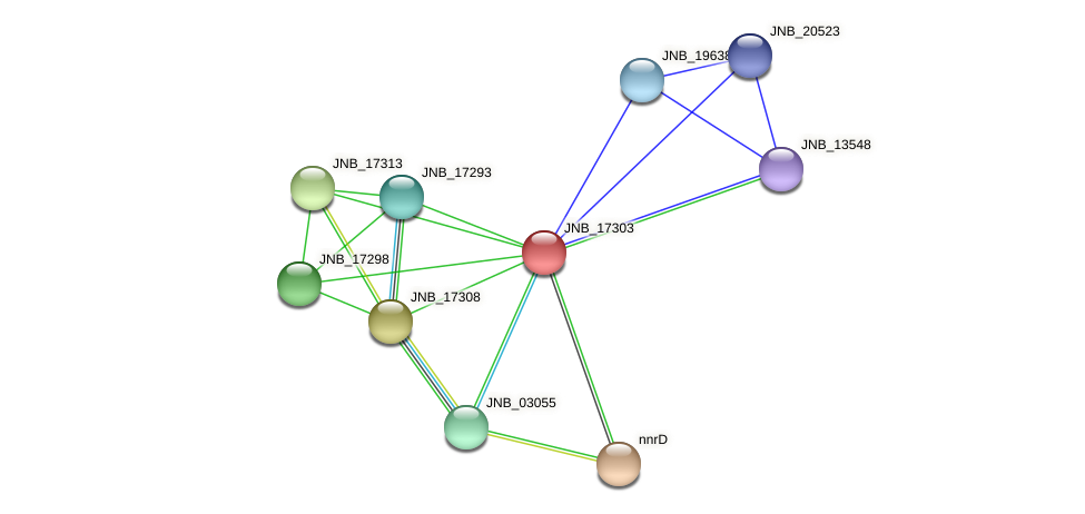 JNB_17303 protein (Janibacter sp. HTCC2649) - STRING interaction network