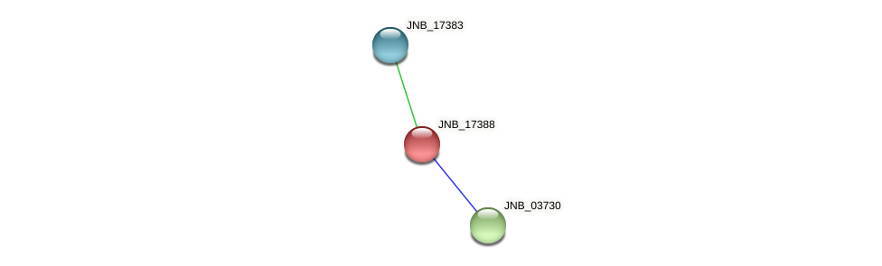 JNB_17388 protein (Janibacter sp. HTCC2649) - STRING interaction network