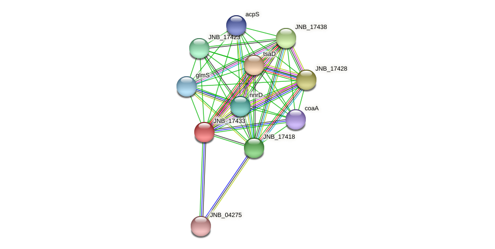 JNB_17433 protein (Janibacter sp. HTCC2649) - STRING interaction network