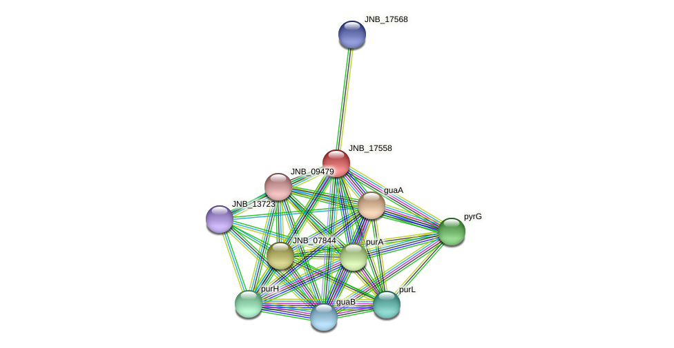 JNB_17558 protein (Janibacter sp. HTCC2649) - STRING interaction network