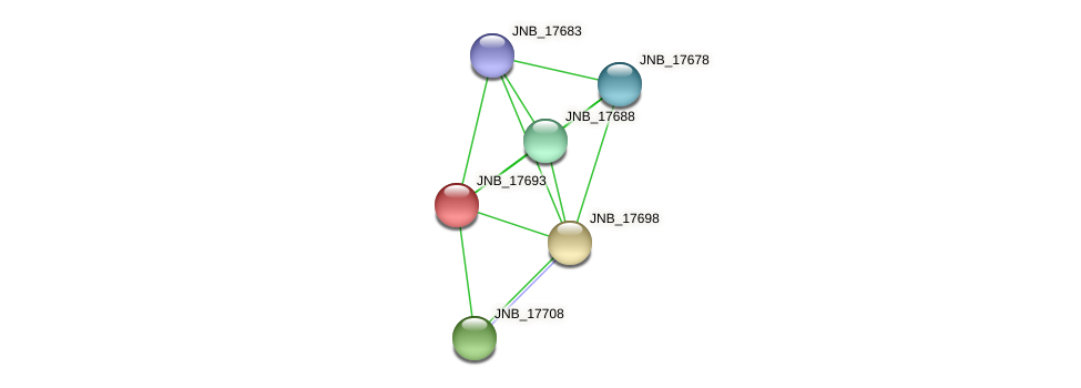 JNB_17693 protein (Janibacter sp. HTCC2649) - STRING interaction network