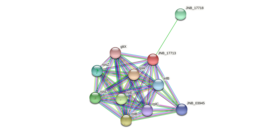 JNB_17713 protein (Janibacter sp. HTCC2649) - STRING interaction network