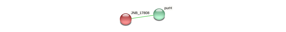 JNB_17808 protein (Janibacter sp. HTCC2649) - STRING interaction network