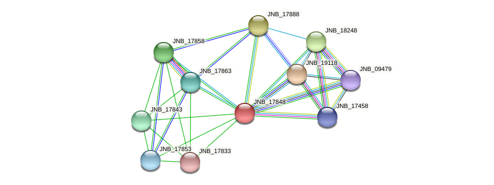 JNB_17848 protein (Janibacter sp. HTCC2649) - STRING interaction network