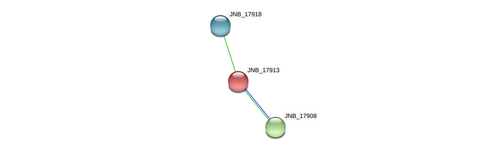 JNB_17913 protein (Janibacter sp. HTCC2649) - STRING interaction network