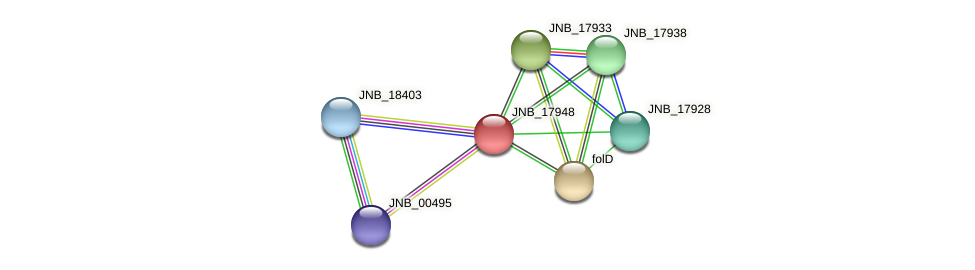 JNB_17948 protein (Janibacter sp. HTCC2649) - STRING interaction network