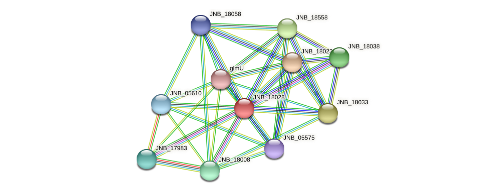 JNB_18028 protein (Janibacter sp. HTCC2649) - STRING interaction network