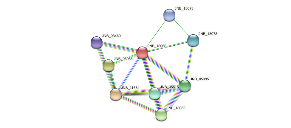 JNB_18068 protein (Janibacter sp. HTCC2649) - STRING interaction network