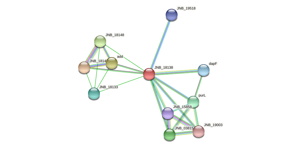 JNB_18138 protein (Janibacter sp. HTCC2649) - STRING interaction network