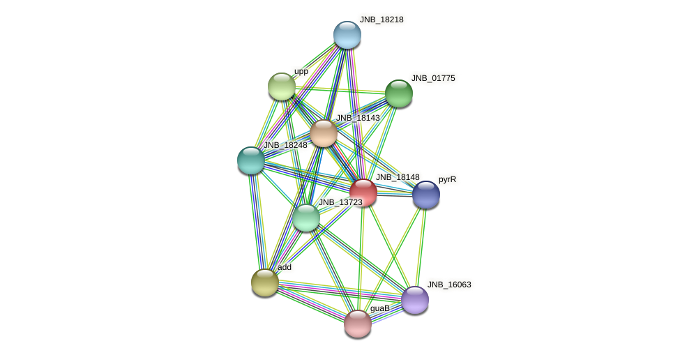 JNB_18148 protein (Janibacter sp. HTCC2649) - STRING interaction network