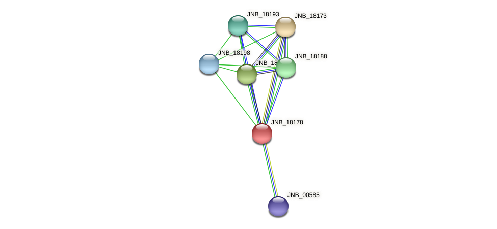 JNB_18178 protein (Janibacter sp. HTCC2649) - STRING interaction network