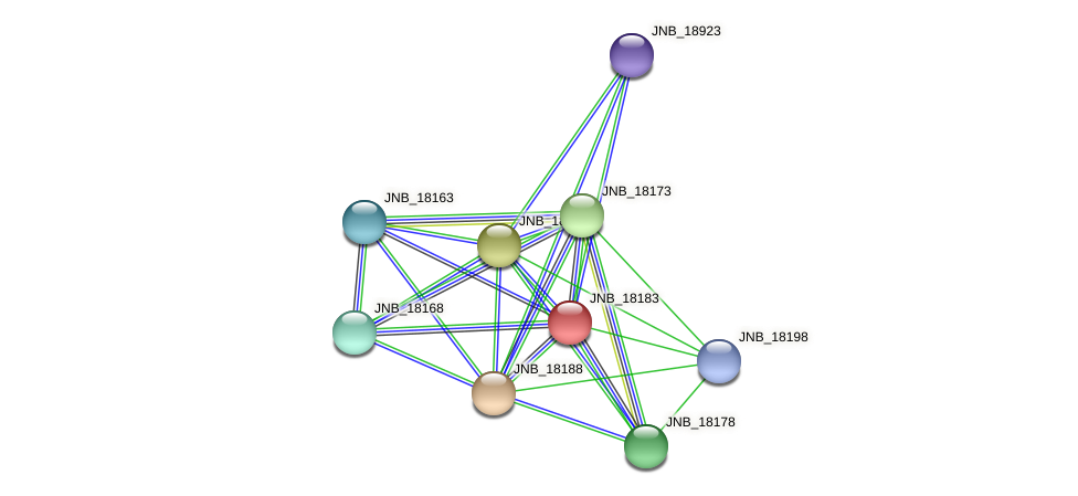 JNB_18183 protein (Janibacter sp. HTCC2649) - STRING interaction network