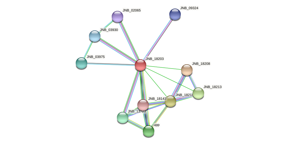 JNB_18203 protein (Janibacter sp. HTCC2649) - STRING interaction network