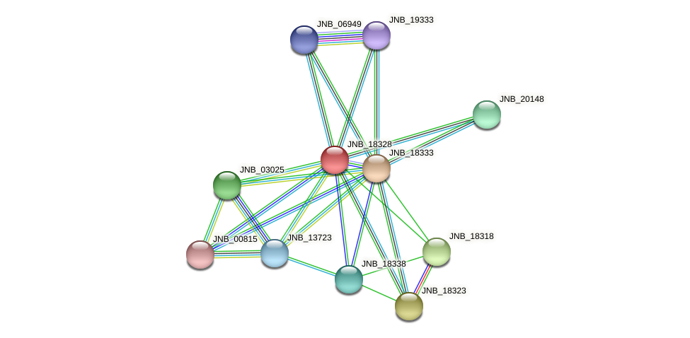 JNB_18328 protein (Janibacter sp. HTCC2649) - STRING interaction network