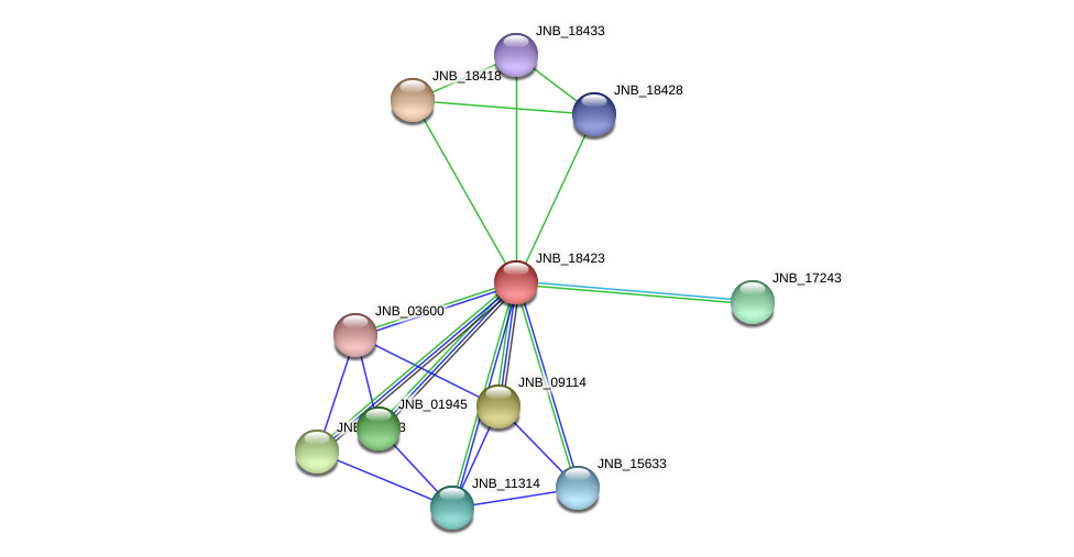 JNB_18423 protein (Janibacter sp. HTCC2649) - STRING interaction network