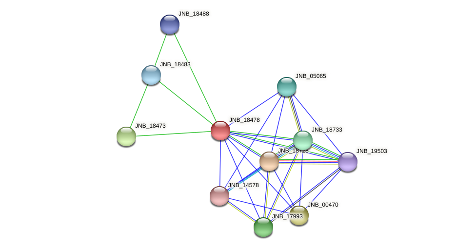 JNB_18478 protein (Janibacter sp. HTCC2649) - STRING interaction network