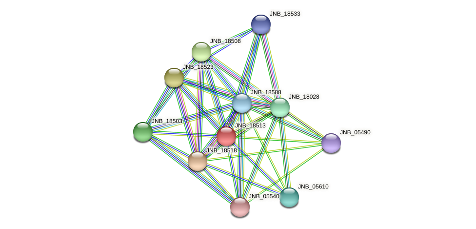 JNB_18513 protein (Janibacter sp. HTCC2649) - STRING interaction network