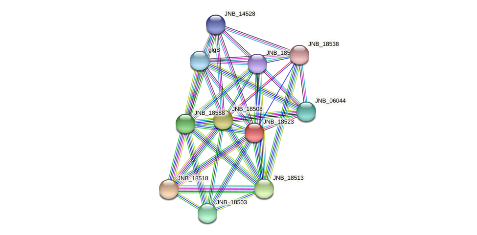 JNB_18523 protein (Janibacter sp. HTCC2649) - STRING interaction network