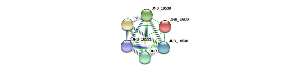 JNB_18528 protein (Janibacter sp. HTCC2649) - STRING interaction network