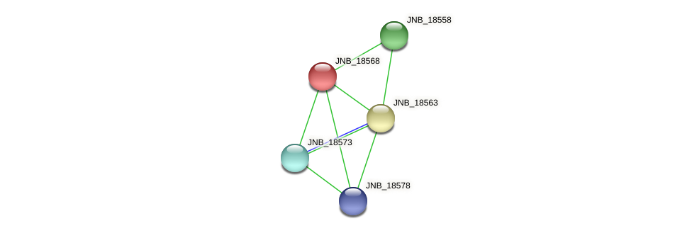 JNB_18568 protein (Janibacter sp. HTCC2649) - STRING interaction network