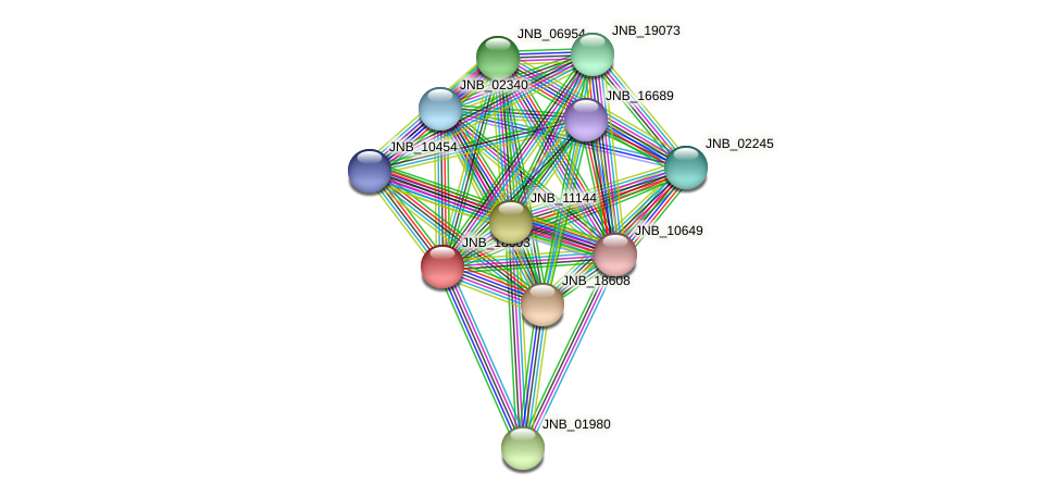 JNB_18603 protein (Janibacter sp. HTCC2649) - STRING interaction network