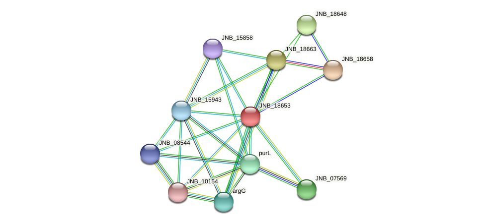 JNB_18653 protein (Janibacter sp. HTCC2649) - STRING interaction network