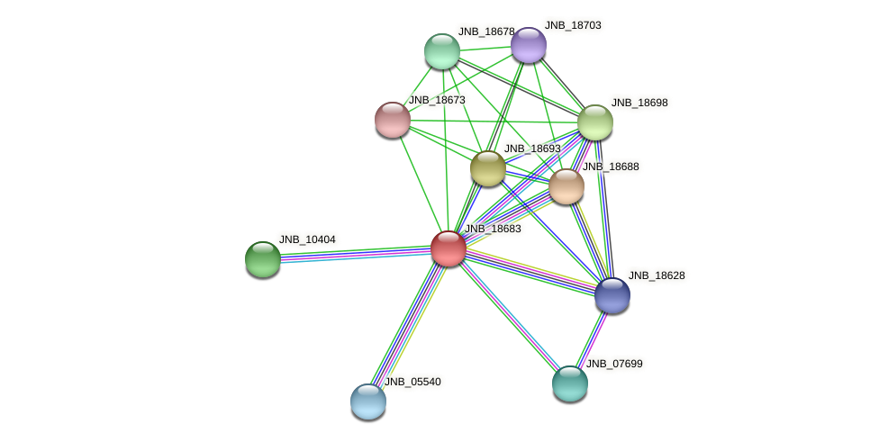 JNB_18683 protein (Janibacter sp. HTCC2649) - STRING interaction network
