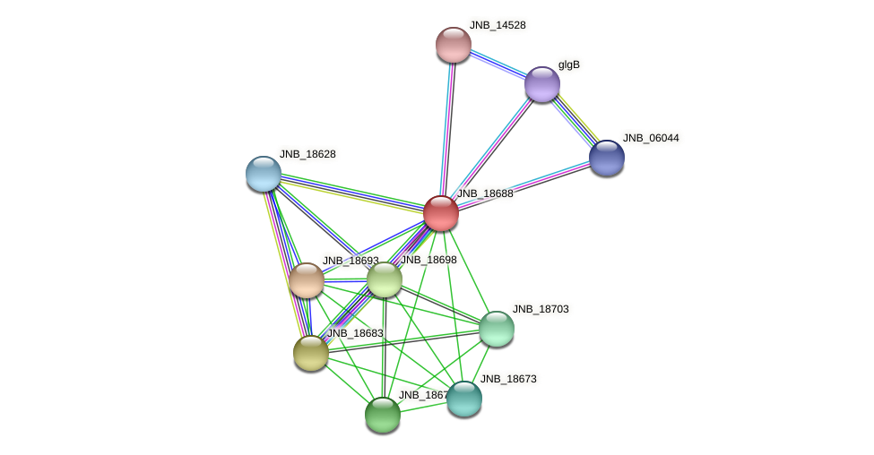 JNB_18688 protein (Janibacter sp. HTCC2649) - STRING interaction network