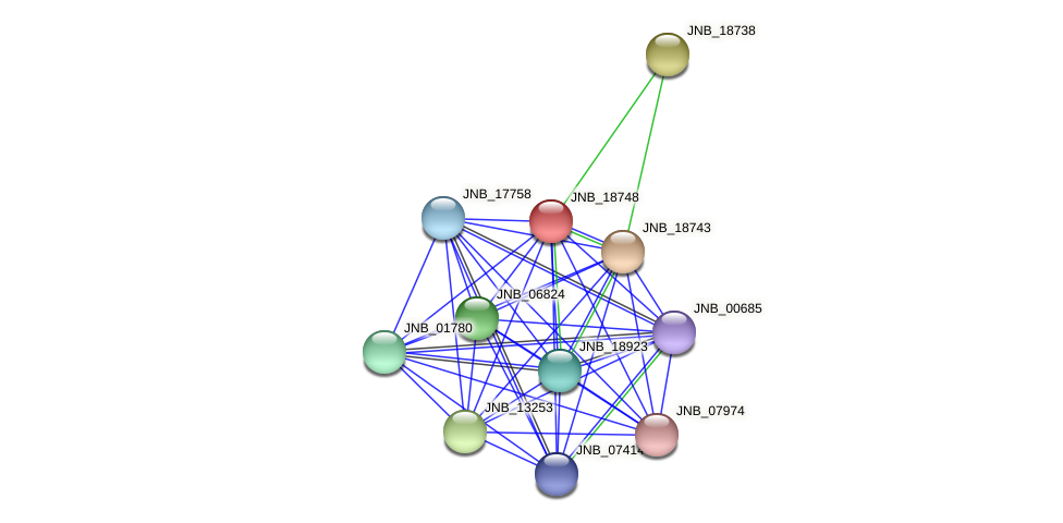 JNB_18748 protein (Janibacter sp. HTCC2649) - STRING interaction network