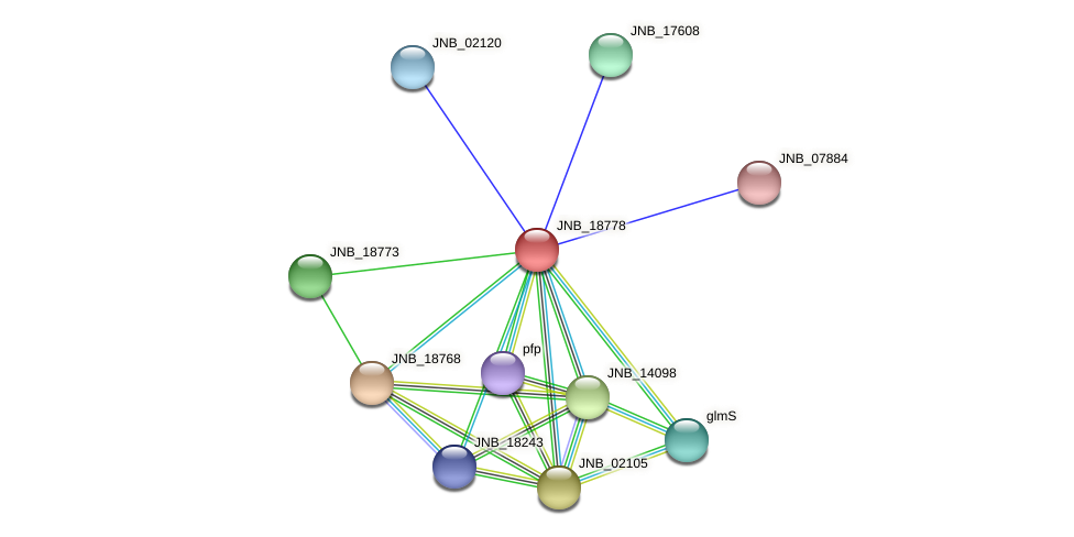 JNB_18778 protein (Janibacter sp. HTCC2649) - STRING interaction network