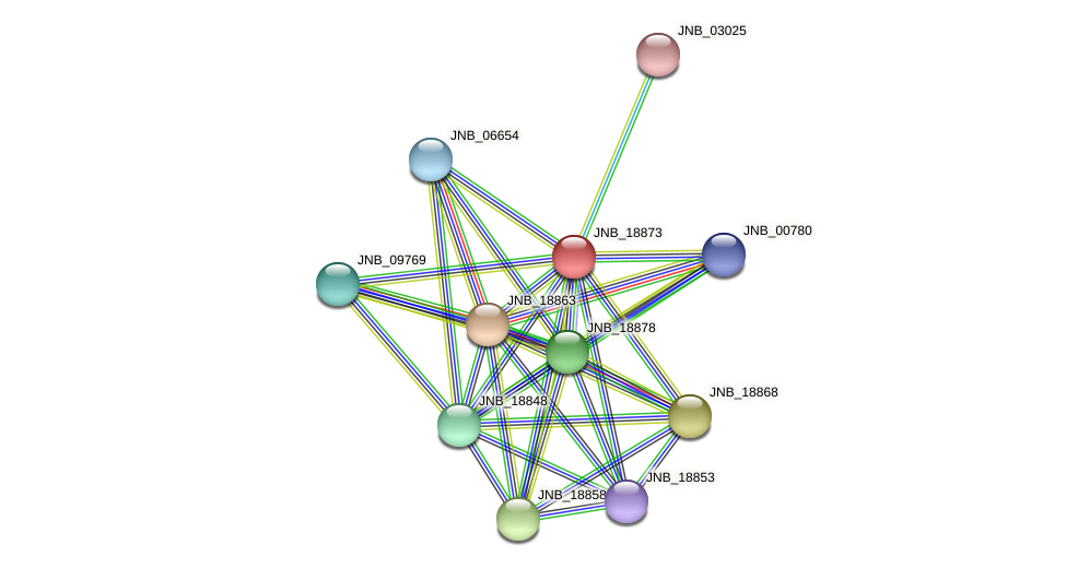 JNB_18873 protein (Janibacter sp. HTCC2649) - STRING interaction network