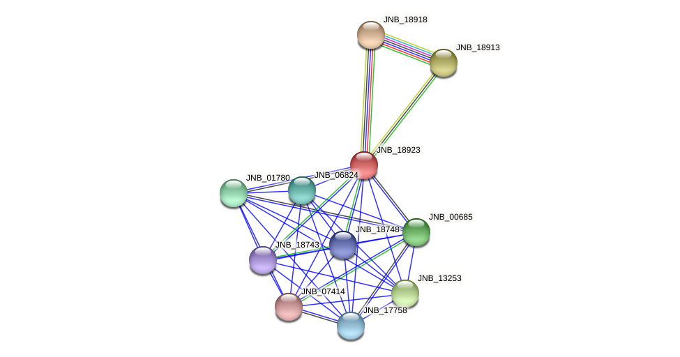 JNB_18923 protein (Janibacter sp. HTCC2649) - STRING interaction network