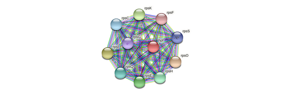 JNB_18933 protein (Janibacter sp. HTCC2649) - STRING interaction network