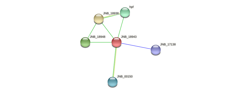 JNB_18943 protein (Janibacter sp. HTCC2649) - STRING interaction network