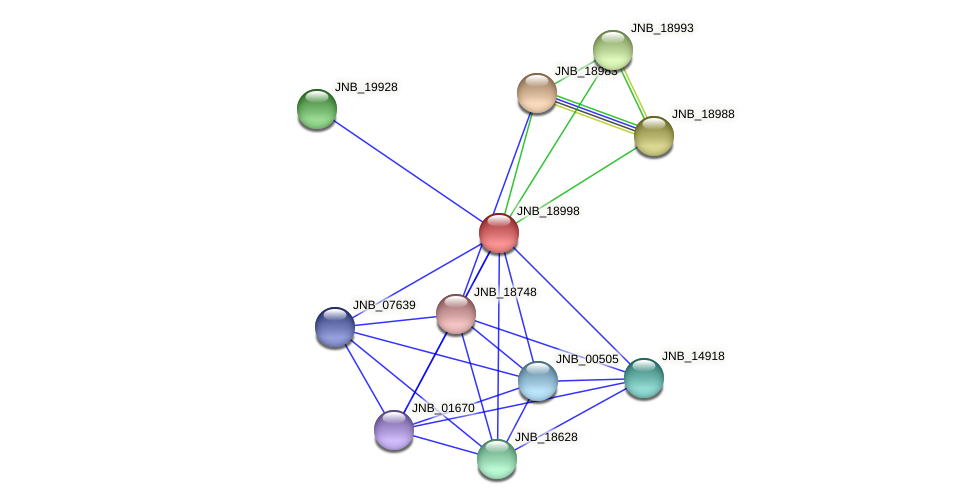 JNB_18998 protein (Janibacter sp. HTCC2649) - STRING interaction network
