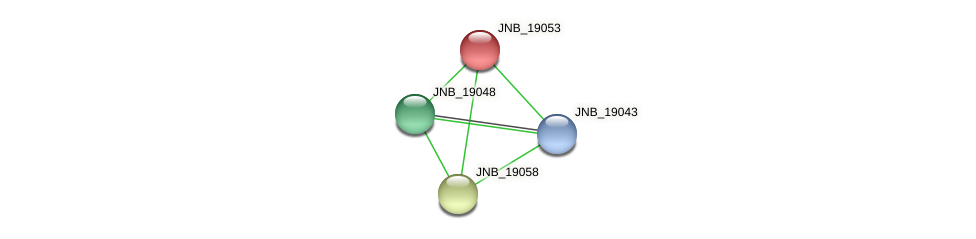 JNB_19053 protein (Janibacter sp. HTCC2649) - STRING interaction network