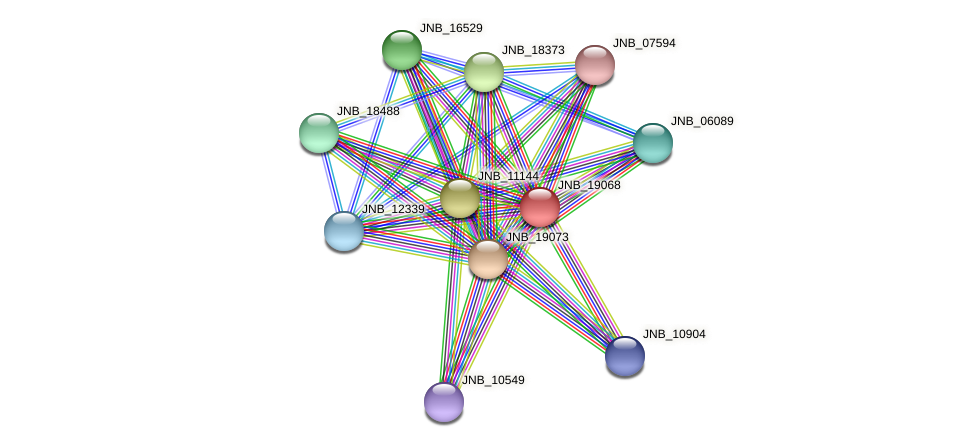 JNB_19068 protein (Janibacter sp. HTCC2649) - STRING interaction network