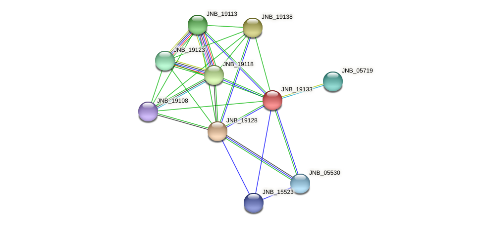 JNB_19133 protein (Janibacter sp. HTCC2649) - STRING interaction network